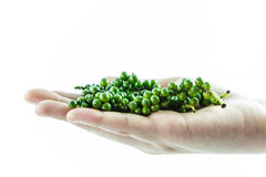 De verse groene paprika op hand isoleert Royalty-vrije Stock Afbeelding