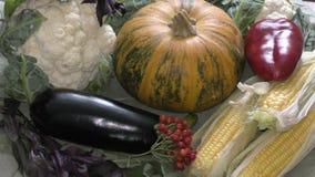De verse groenten en de kruiden worden verkocht bij de Bazaar stock videobeelden