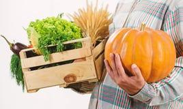De verse groenten van de leveringsdienst van landbouwbedrijf Koop verse inlandse groenten Enkel van tuin De landbouwer draagt doo stock foto