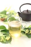 De verse hete thee van de kalkbloesem Stock Fotografie