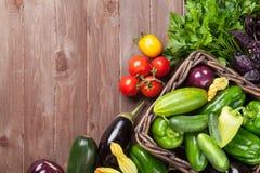 De verse landbouwers tuinieren groenten en kruiden stock fotografie