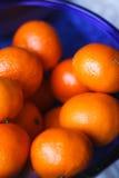 De verse mandarijnen liggen in een blauwe kom Stock Afbeeldingen