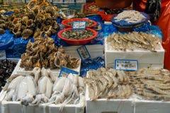 De verse Markt van Zeevruchtenvissen Stock Afbeeldingen