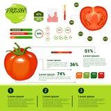 De verse Organische Groei, de Landbouw en de Landbouw van Infographics Natuurlijke Vagetables vector illustratie