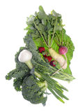 De verse Organische Groenten van het Landbouwbedrijf Royalty-vrije Stock Foto