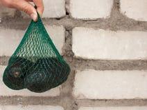 De verse organische hassavocado's in een groen koord doen in mannelijke handen op een bakstenen muurachtergrond in zakken, gezond stock foto's