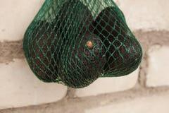 De verse organische hassavocado's in een groen koord doen op een bakstenen muurachtergrond in zakken, gezond voedselconcept, exem stock afbeelding