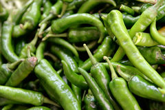 De verse Peper van Chili Stock Foto