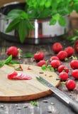 De verse radijs van de voedselfotografie Stock Afbeeldingen