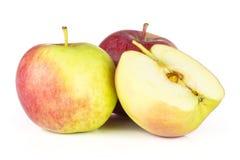 De verse rode appel James treurt geïsoleerd op wit royalty-vrije stock afbeelding