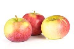 De verse rode appel James treurt geïsoleerd op wit stock afbeelding