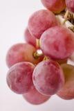 De verse roze macro van de druivenclose-up royalty-vrije stock foto