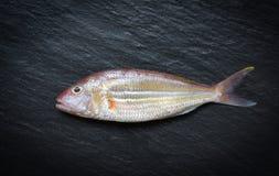 De verse ruwe vissen op donkere Zeevruchten als achtergrond vissen oceaan gastronomisch voor kok in het restaurant royalty-vrije stock afbeelding