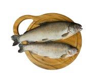 De verse ruwe vissenforel is twee stukken op de raad royalty-vrije stock foto's