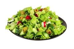 De verse salade van de slalente Stock Fotografie