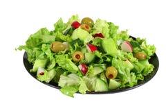De verse salade van de slalente Stock Afbeelding
