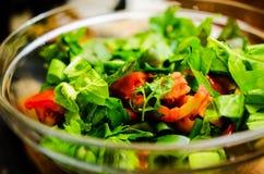De verse Salade van de Zomer royalty-vrije stock afbeeldingen
