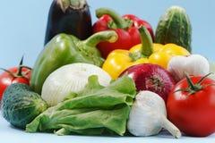 De verse smakelijke groenten isoleerden het blauw Royalty-vrije Stock Foto's