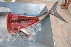 De verse tonijn in het ijs stock foto's