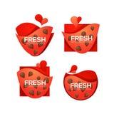 De verse, vectorinzameling van snoepje en glanst watermeloenembleem, verbod Royalty-vrije Stock Foto's