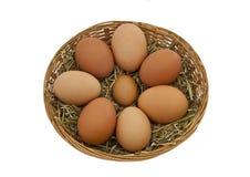 De vrije eieren van waaierkippen in een mand Stock Foto's