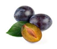 De verse Vruchten van de Pruim met Groen Blad Stock Fotografie