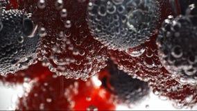 De verse vruchten zwemmen in het water stock video