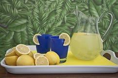 De verse Waterkruik van de Limonade op Dienblad Royalty-vrije Stock Fotografie