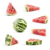 De Verse watermeloen van de inzameling Royalty-vrije Stock Foto