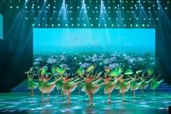 De verse wind blaast zacht-klassieke ballet-Internationale Dag van de Arbeidprestaties Stock Afbeeldingen
