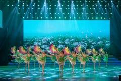 De verse wind blaast zacht-klassieke ballet-Internationale Dag van de Arbeidprestaties Stock Foto
