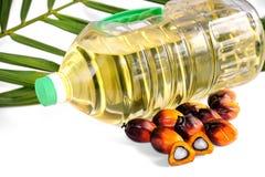 De verse zaden van de Palmolie en tafelolie met blad stock foto's