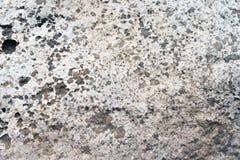 De versleten bleke witte en zwarte concrete achtergrond van de muurtextuur Geweven pleister royalty-vrije stock foto