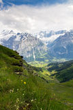 De verticaal van Grindelwald Royalty-vrije Stock Foto's
