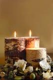 De Verticaal van het Welriekend mengsel van gedroogde bloemen en kruiden van de winter Royalty-vrije Stock Afbeelding