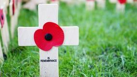 De vertoning van de herinneringsdag in de Abdij van Westminster Stock Foto