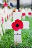 De vertoning van de herinneringsdag in de Abdij van Westminster Stock Afbeeldingen