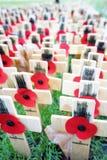 De vertoning van de herinneringsdag in de Abdij van Westminster Stock Foto's