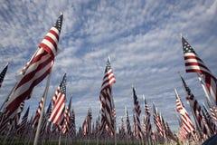 De vertoning van de vlag Stock Foto