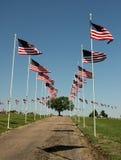 De Vertoning van de vlag op Begraafplaats op HerdenkingsDag Stock Foto's