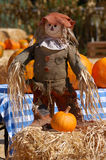 De vertoning van Halloween Stock Foto's