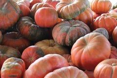 De Vertoning van het pompoenflard - Oranje Pompoenen Stock Foto