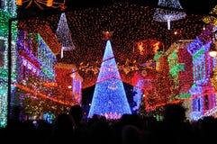 De vertoning van Kerstmis van Osborne bij de Wereld van Walt Disney Royalty-vrije Stock Fotografie