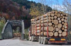 De vervoerende logboeken van de vrachtwagen Stock Fotografie