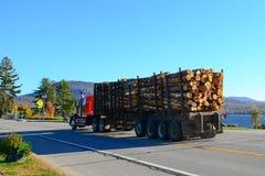 De vervoerende logboeken van de vrachtwagen Royalty-vrije Stock Afbeelding