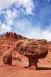 De verwering in de rode woestijn royalty-vrije stock foto's