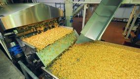 De verwerkte aardappelstukken bewegen zich langs de vervoerder stock video