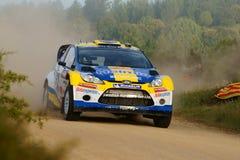 De Verzameling D'Italia Sardegna van WRC 2011 - ANDERSSON Royalty-vrije Stock Foto's