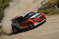 De Verzameling D'Italia Sardegna van WRC 2011 - BRYNILDSEN Stock Afbeelding