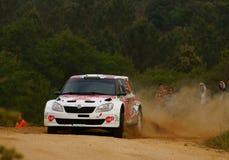 De Verzameling D'Italia Sardegna van WRC 2011 - KRUUDA Royalty-vrije Stock Afbeelding